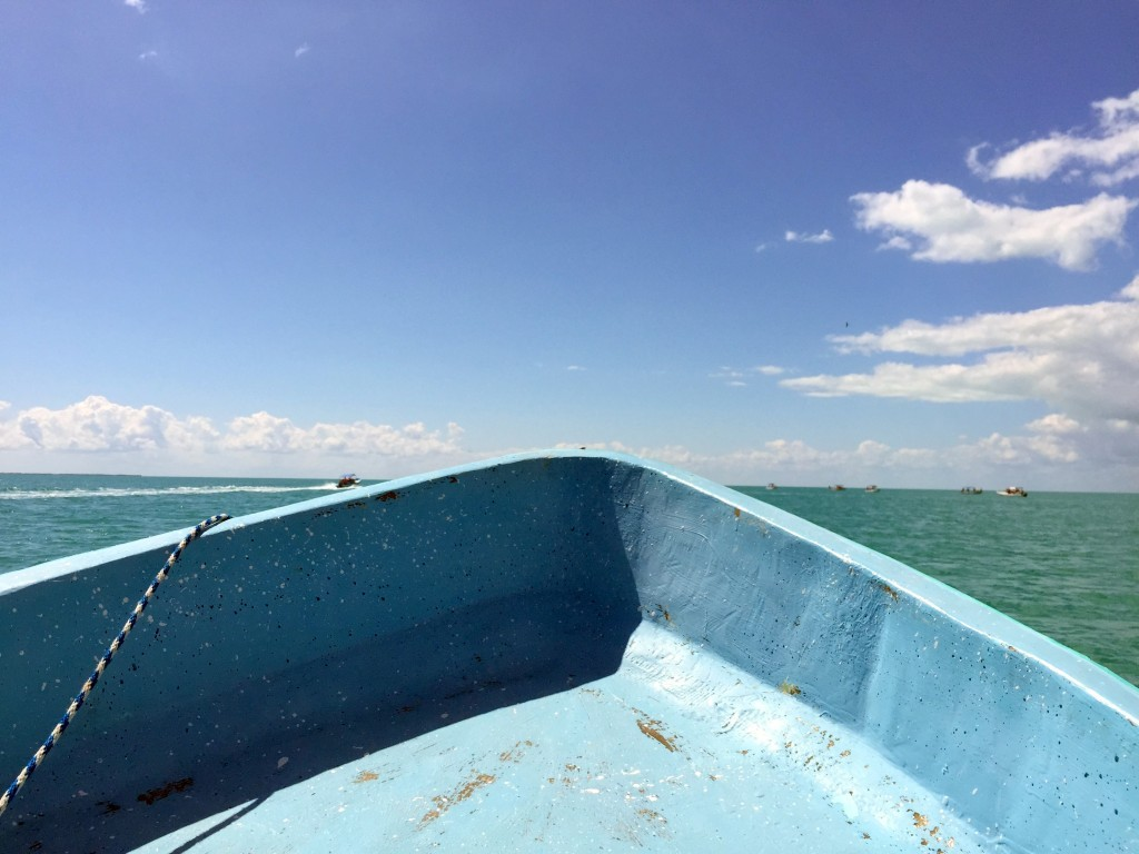 on-the boat -Day tour to Punta Allen-Sian Kaan
