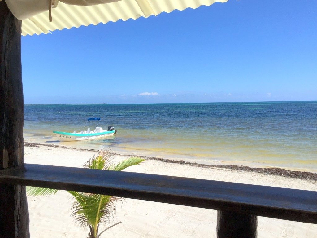 view from the restaurant Day tour to Punta Allen-Sian Kaan